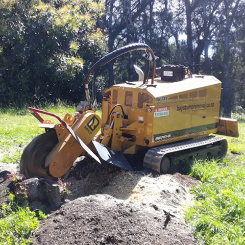 Bay Stump Removal